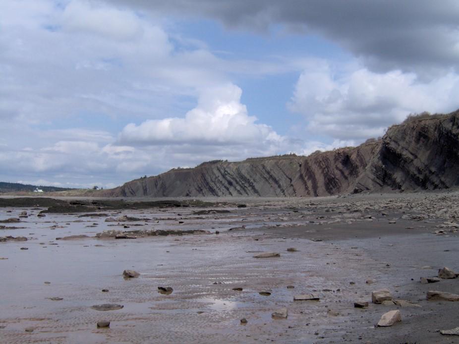 Sedimentgestein in Joggins, Nova Scotia. Die Schichten sind in einem Winkel von ungefähr 30 Grad gelagert, mit einer vertikalen Stärke von über einem Kilometer.