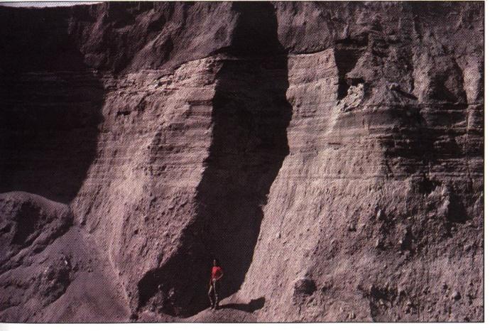 Sedimentschichten, die 1980 am Mount Saint Helens (im US-Staat Washington) entstanden sind, waren 1983 bereits bröckelig geworden. Aus: 'Grand Canyon: Monument to Catastrophe' von Dr. Steve Austin