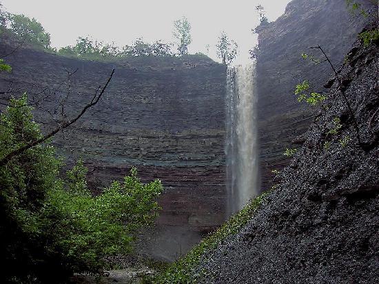 Das so genannte Eskarpment (Steilhang) bei Hamilton, Ontario, Kanada, zeigt vertikales Sedimentgestein von vielen Metern Dicke. Dies ist ein Teil des Niagara-Eskarpments, das sich über Hunderte von Kilometern erstreckt.